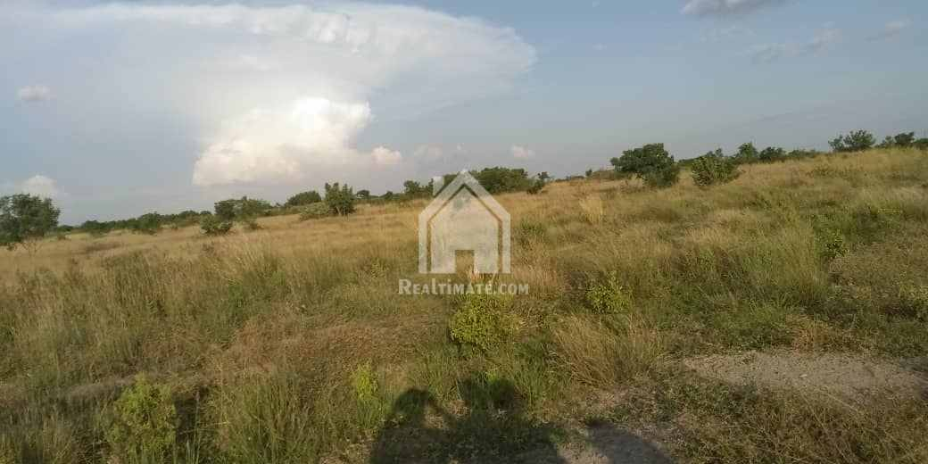Farm land for sale at Ho