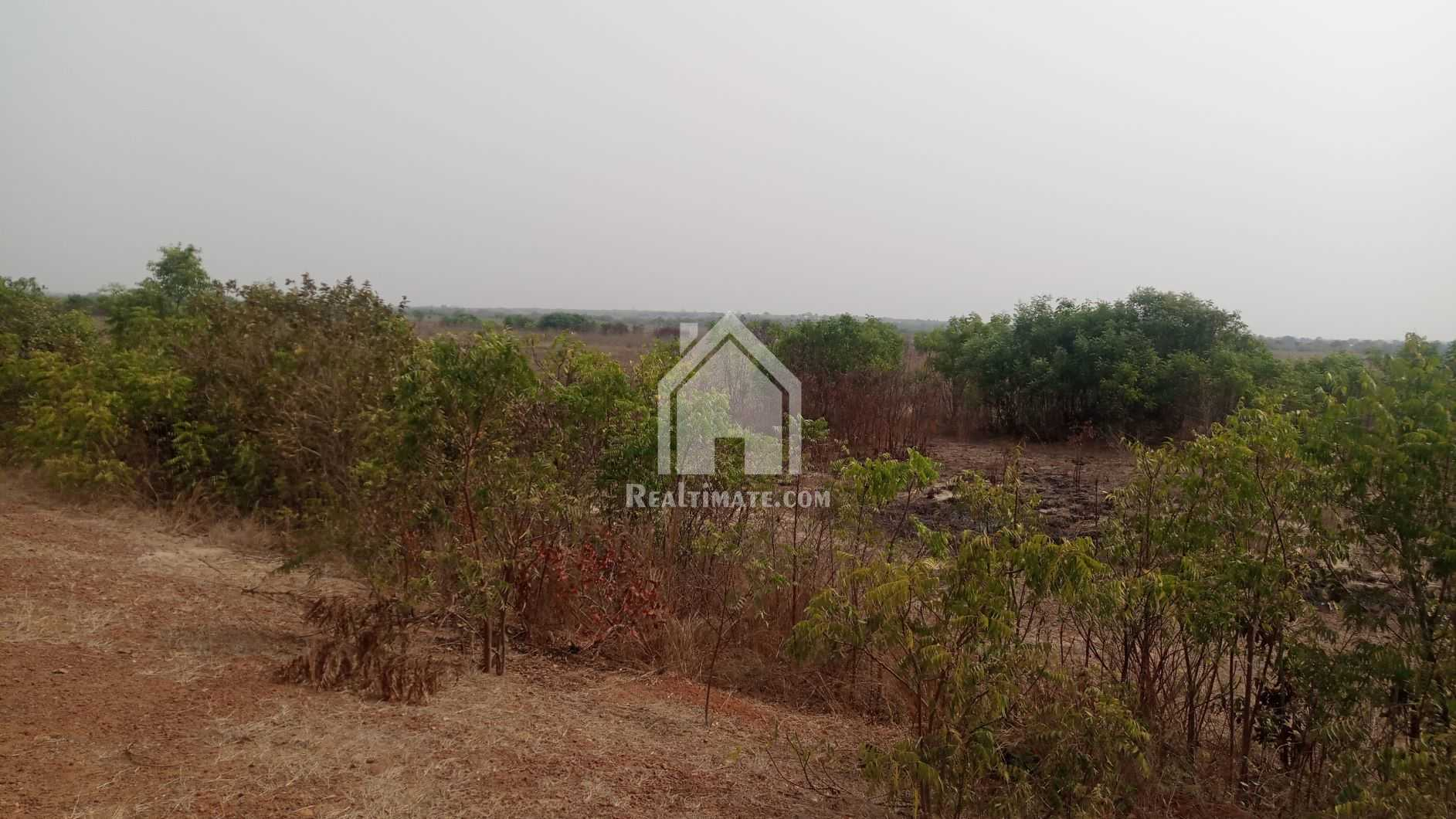 Plot of Land for sale at Dawa