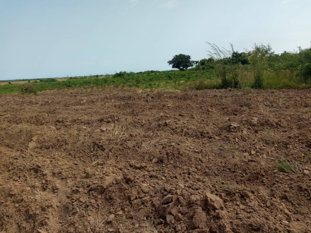 Land for sale at Dawa, after New Airport City