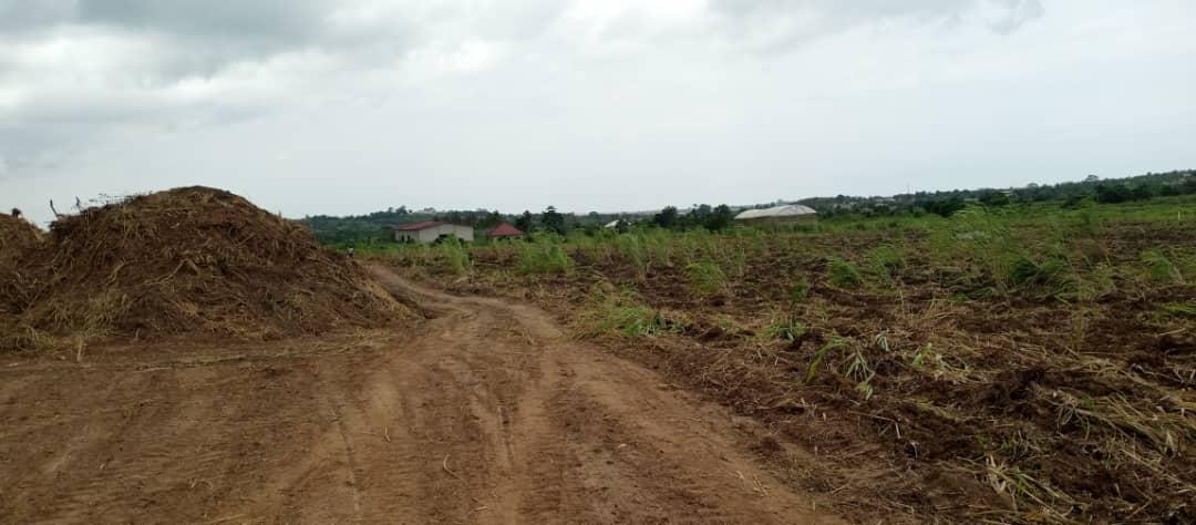 Genuine lands for sale